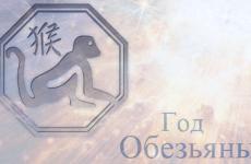 Год Обезьяны: астрологи рассказали о неутешительных совпадениях